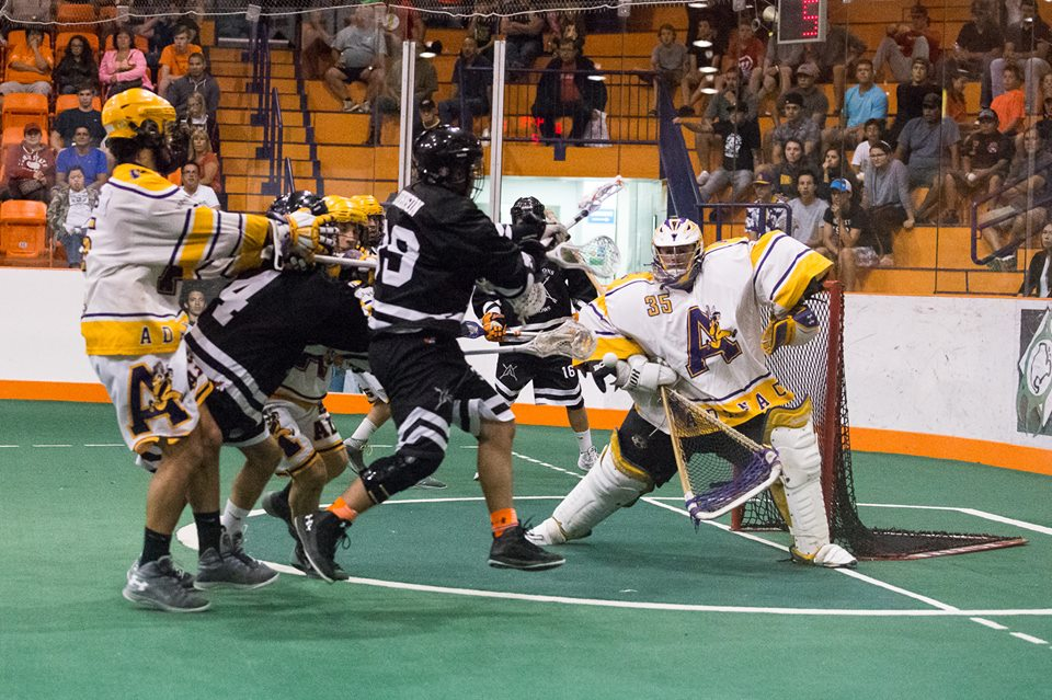 arrows vs adanacs