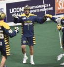 NLL: Swarm fall in opener, stung by Black Wolves 13-11